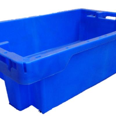 Fishbox1